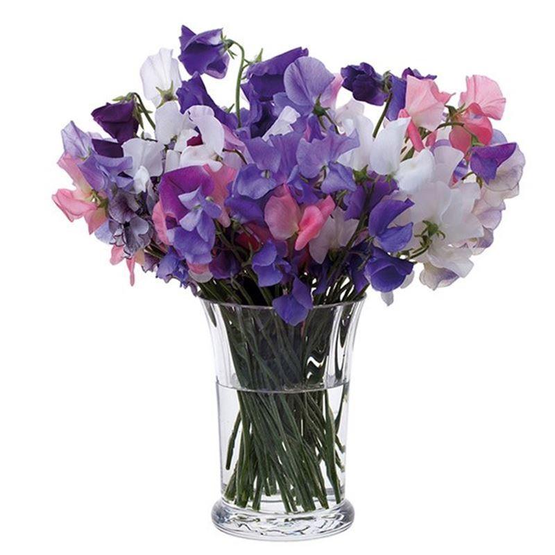 Dartington – Florabundance Crystal Sweet Pea Vase 15cm (Made in the U.K.)
