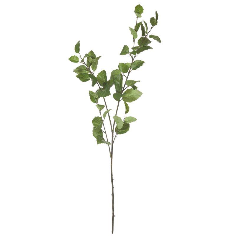 Rogue –  Elm Leaf Spray 15x25x112cm Green