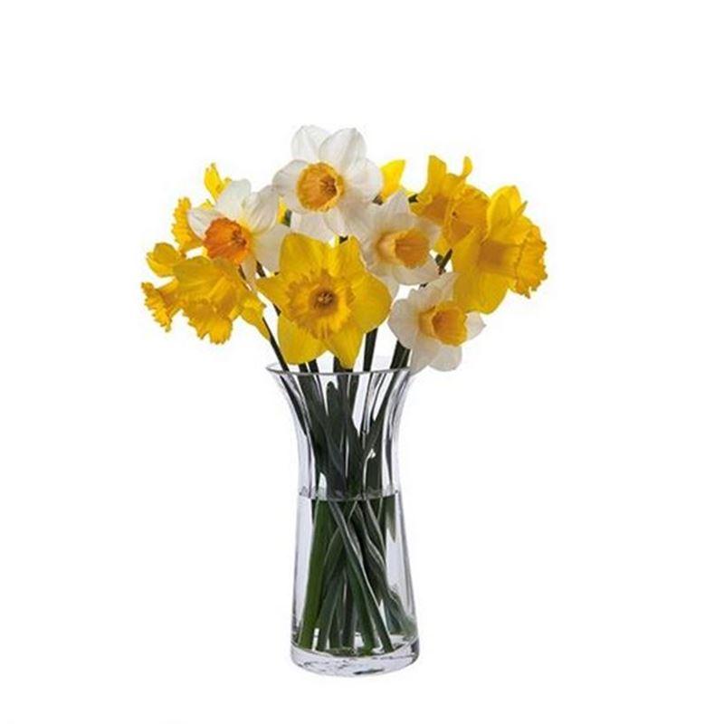 Dartington – Florabundance Crystal Daffodil Vase 22.5cm (Made in the U.K.)