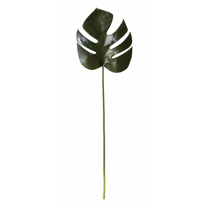 Rogue –  Monsteria Leaf 3x23x81cm Green
