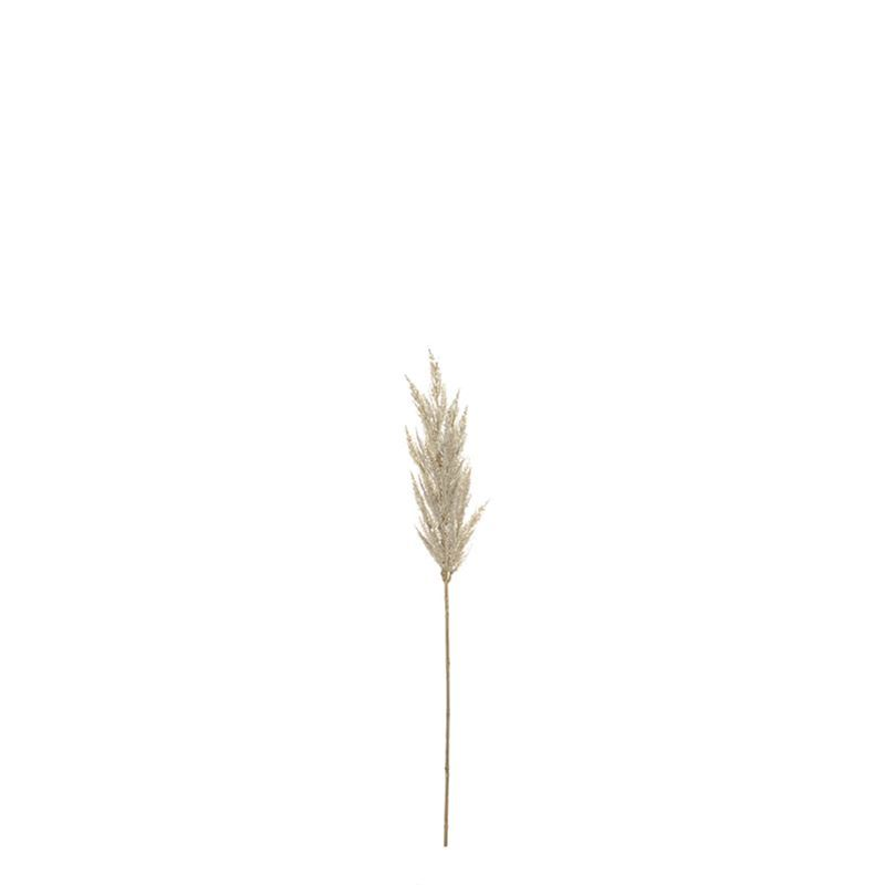 Rogue – Pampas Grass Spray 15x15x92cm Cream