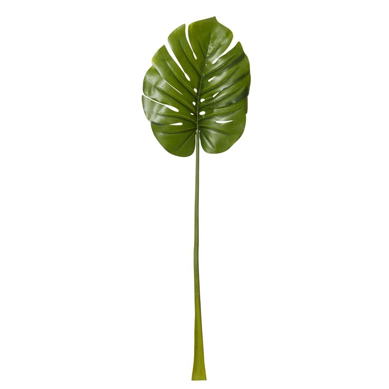 Rogue – Monsteria Leaf 30x10x110cm Green